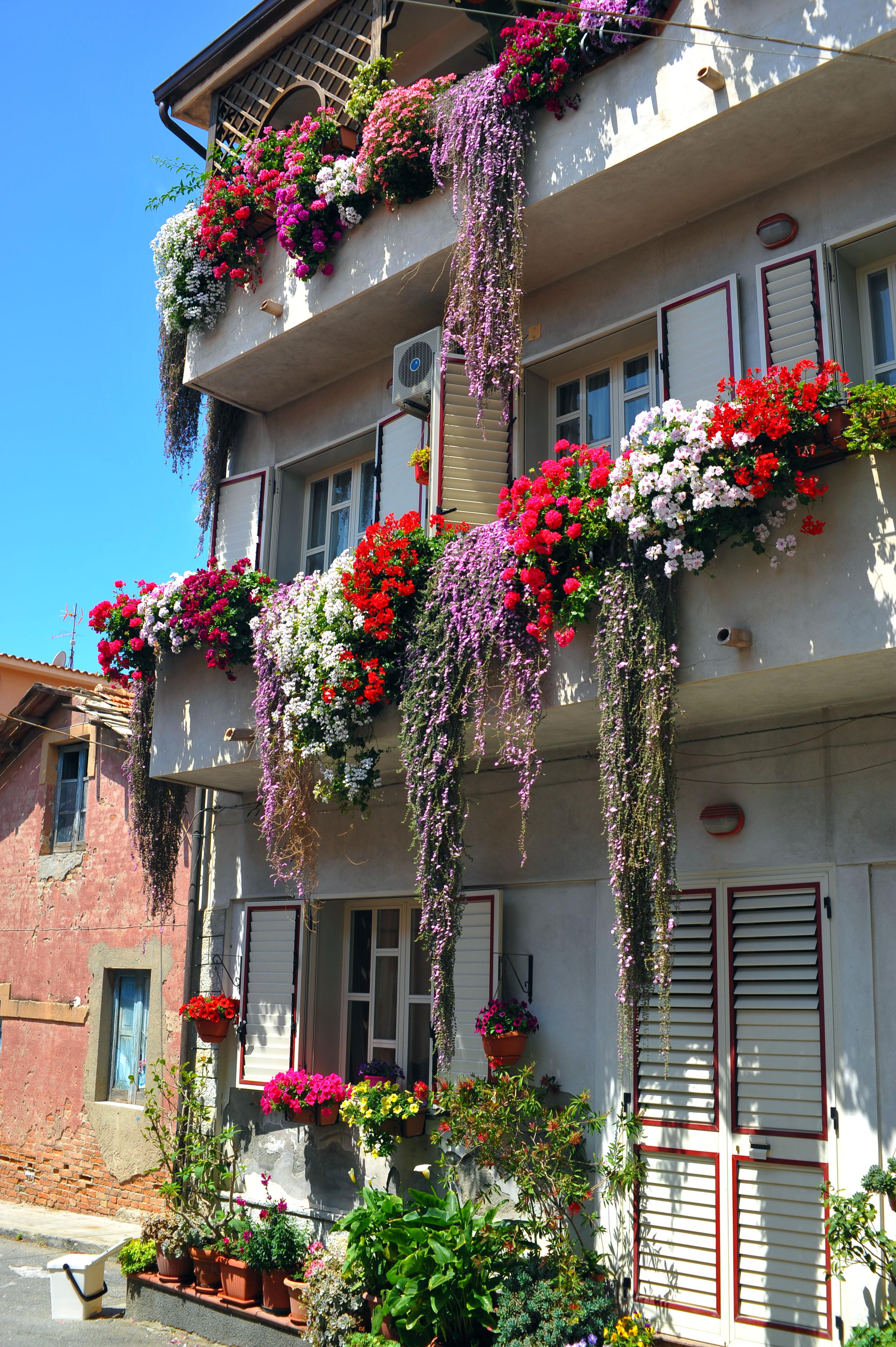 Balconi fioriti grazie a Gabriella Fascì