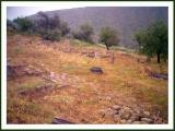 Notizie di topografia antica sul Leucopetra Akroterion